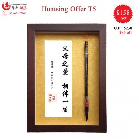 Huatsing Offer T5